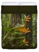 Splendid Leaf Frog  Costa Rica Duvet Cover