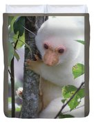 Spotted Cuscus Phalanger Maculatus Duvet Cover