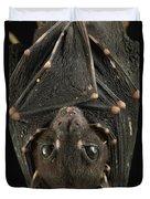 Spotted-winged Fruit Bat Balionycteris Duvet Cover