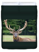 Spring Antlers Duvet Cover
