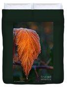 Sprinkled Frost Duvet Cover