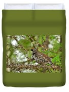 Spruce Grouse Duvet Cover