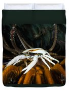 Squat Lobster Carrying Eggs, Indonesia Duvet Cover