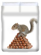 Squirrel And Nut Pyramid Duvet Cover