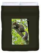 Squirrel IIi Duvet Cover