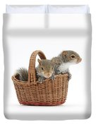 Squirrels In A Basket Duvet Cover by Mark Taylor