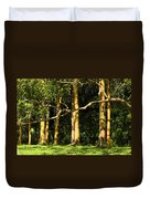 Stand Of Rainbow Eucalyptus Trees Duvet Cover