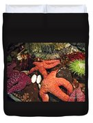 Starfish Medley Duvet Cover by Methune Hively