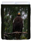 Steller's Sea Eagle Duvet Cover