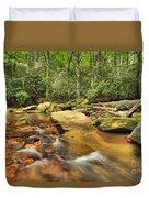 Stone Mountain Stream Duvet Cover