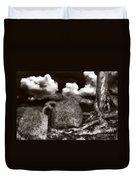 Stones And Roots Duvet Cover