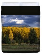Storm Over Sleeping Indian-grand Tetons Duvet Cover