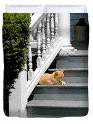 Stratford Cat Nap Duvet Cover