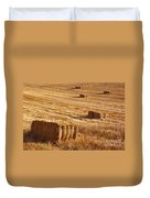 Straw Field Duvet Cover by Carlos Caetano