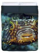 Striped Burrfish On Caribbean Reef Duvet Cover