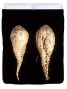 Sugar Beet Breeding Duvet Cover