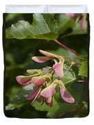 Sugar Maple Acer Saccharum Seed Pods Duvet Cover