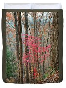 Sumac In Morning Light At Cumberland Falls State Park Duvet Cover