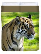 Sumatran Tiger Portrait  Duvet Cover