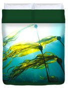Sun Shines Through Bull Kelp Duvet Cover