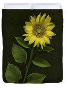 Sunflower With Rocks Duvet Cover by Deddeda
