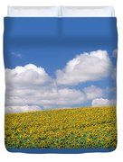 Sunflowers, Austin, Manitoba Duvet Cover