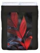 Sunlight Illuminates The Red Leaves Duvet Cover