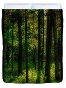 Sunlight In Forest Duvet Cover