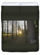 Sunlight In The Forest Duvet Cover