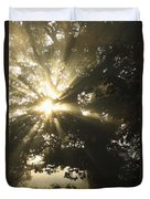 Sunlight Through Tree Cahir, County Duvet Cover