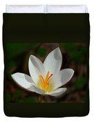 Sunlit Crocus Duvet Cover