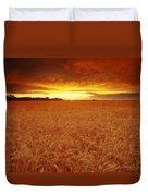 Sunset Over Wheat Field Duvet Cover