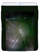 Sunshine On Swamp Spider Duvet Cover