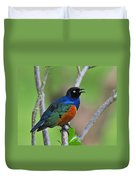 Superb Starling Duvet Cover