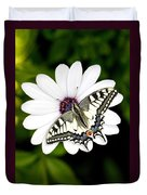 Swallowtail Butterfly Resting Duvet Cover