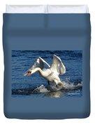 Swan In Action Duvet Cover