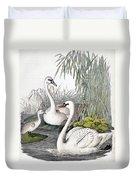 Swans, C1850 Duvet Cover