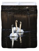 Swans In A Row Duvet Cover