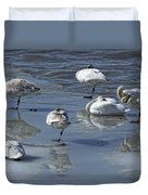 Swans On The Ice Along The Tagish Duvet Cover