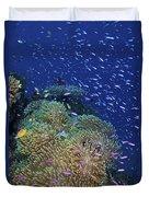 Swarms Of Small Baitfish Swim Duvet Cover