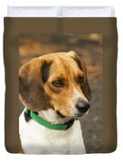 Sweet Little Beagle Dog Duvet Cover