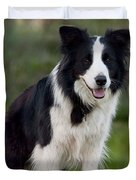 Taj - Border Collie Duvet Cover by Michelle Wrighton