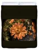 Tanacetum Painted In Red Duvet Cover