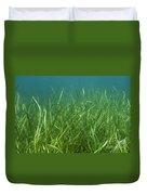 Tapegrass In Freshwater Lake Duvet Cover