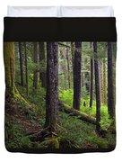Temperate Rain Forest, Carmanah-walbran Duvet Cover
