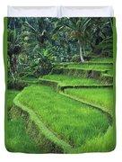 Terraced Fields Of Rice Duvet Cover