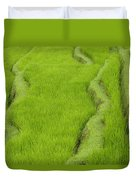 Terraced Rice Paddy, Ubud Area, Bali Duvet Cover