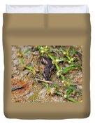 Tersa Sphinx Caterpillar Duvet Cover