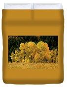 Teton Autumn Foliage Duvet Cover