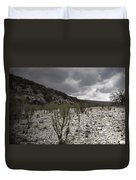 The Bank Of The Nueces River Duvet Cover